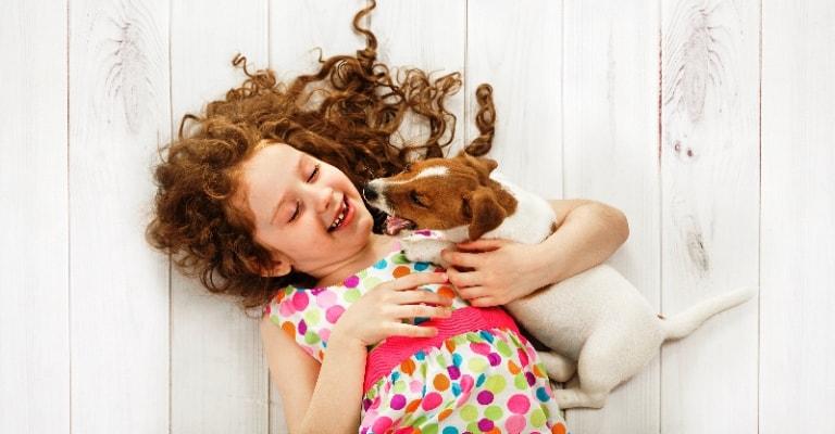 Leishmaniose Visceral Canina: como proteger seu cão