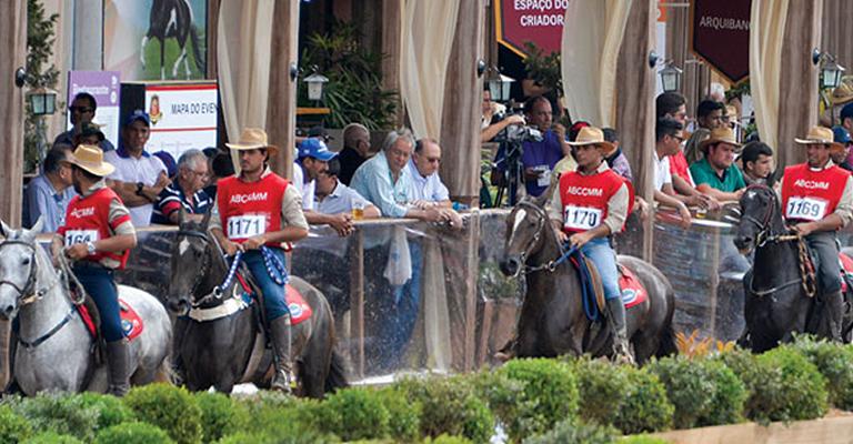 Cruzília recebe evento Nacional do Mangalarga Marchador
