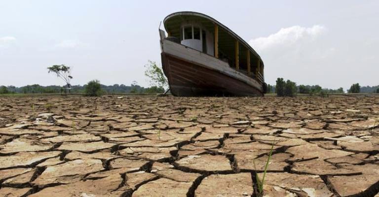 """""""Ação humana contribui para seca na Amazônia"""""""