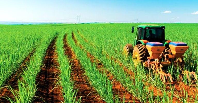 Exportações do agronegócio somam quase US$ 9 bilhões no mês de agosto