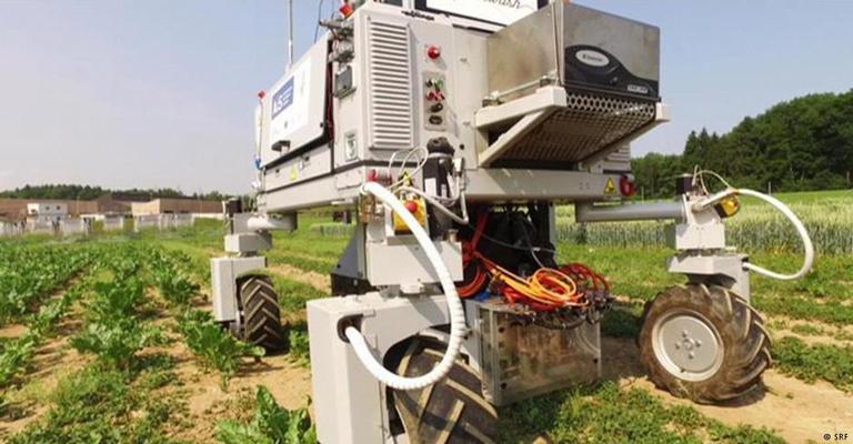 Robôs agrícolas para preservar o meio ambiente