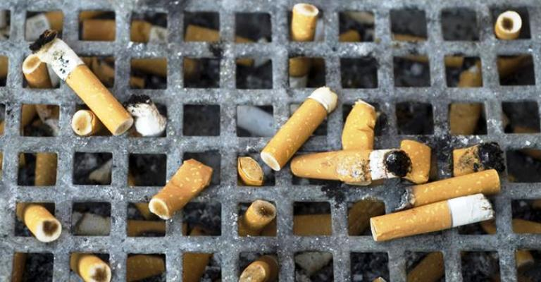 Tabagismo causa enorme dano ao meio ambiente