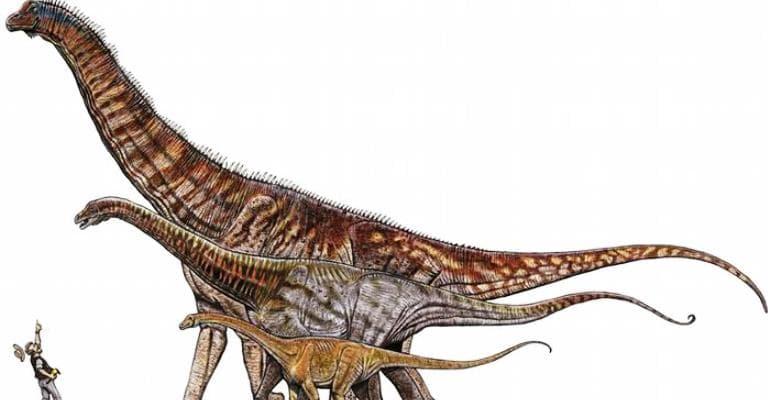 Conheça o maior dinossauro do Brasil