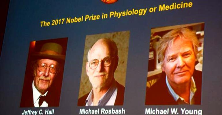 Nobel de Medicina vai para pesquisadores do relógio biológico