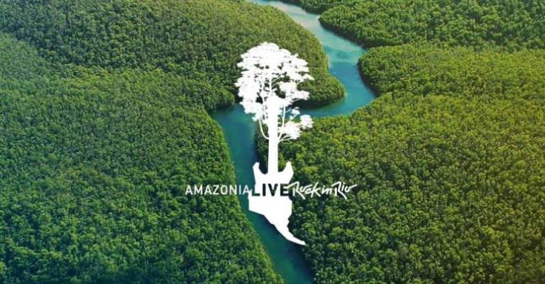 Amazônia terá 30 mil hectares recuperados até 2023