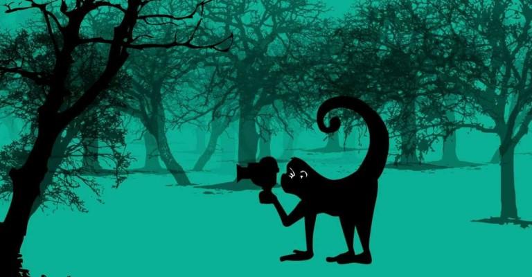 Mostra Ecofalante antecipa exibição virtual gratuita de filmes