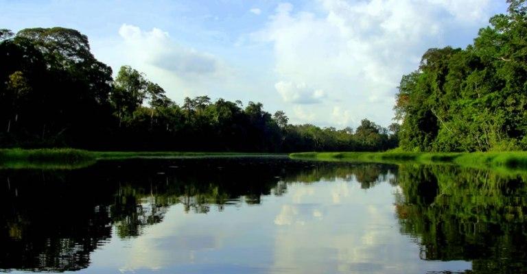 Noruega vai doar US$ 70 milhões ao Fundo Amazônia