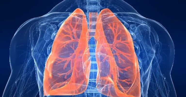 Robô utiliza inteligência artificial para identificar lesões pulmonares