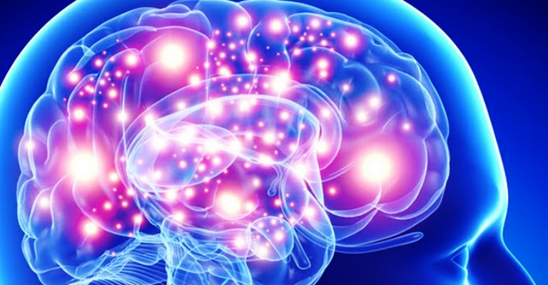 O cérebro: como usar todo o seu potencial