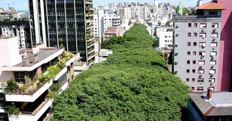 Telhados e corredores verdes são tendência nas cidades