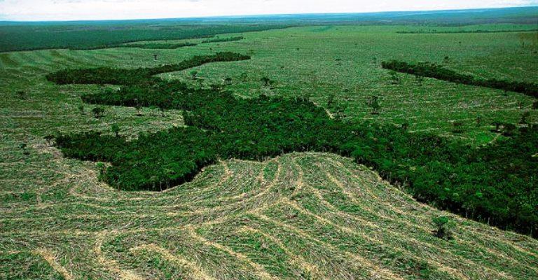 Juiz suspende decreto sobre extinção da Renca na Amazônia