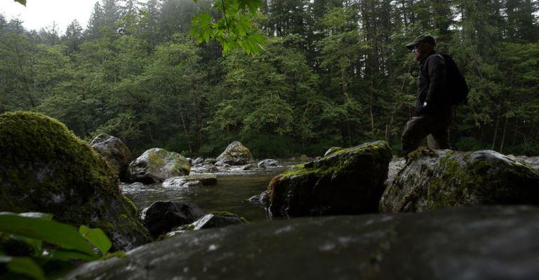 Distanciamento da natureza: os responsáveis somos nós