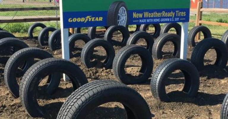 Borracha feita com soja é utilizada em pneus