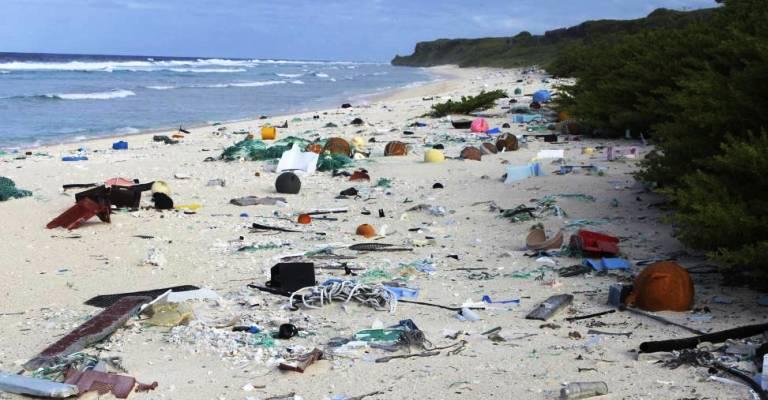Lixo jogado nas praias gera prejuízo e impactos ambientais