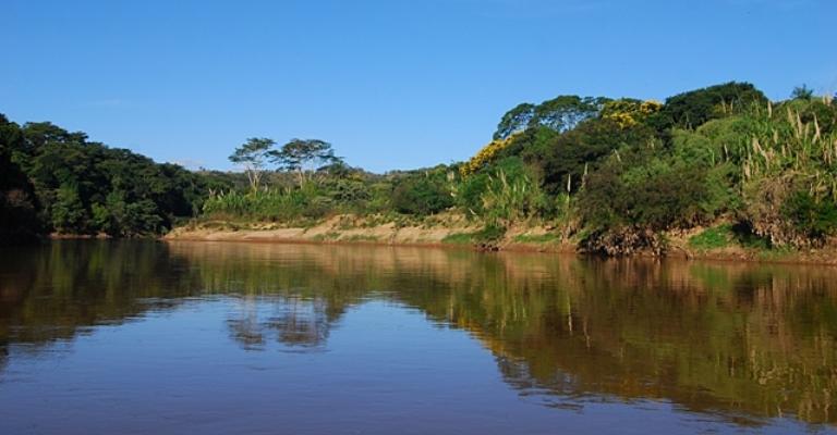 Fórum Mundial busca garantir água a futuras gerações