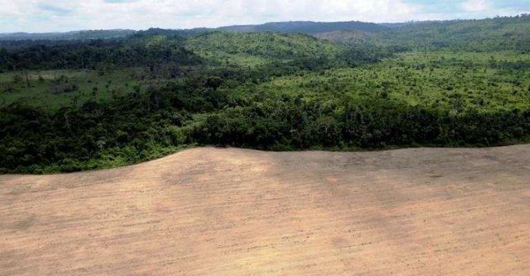 Amazônia pode entrar em ciclo de desmatamento e seca