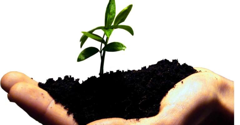 ABNT lança Portal de Sustentabilidade
