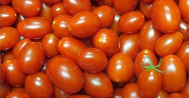 Cinco propriedades do tomate boas para o organismo