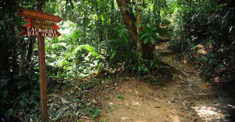 ecológica. Brasil terá rede de trilhas de 18 mil quilômetros 5786456508095
