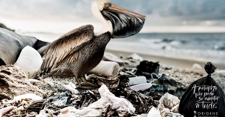 Fauna brasileira tem mais de mil espécies com risco de extinção