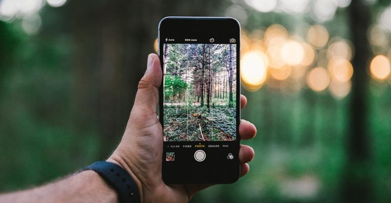 Seis aplicativos para se conectar com a natureza