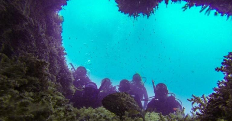 Abrolhos passa a oferecer trilha subaquática noturna
