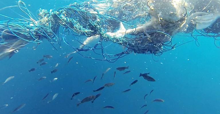 10% do lixo plástico nos oceanos vêm de pesca fantasma