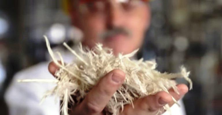 Plástico feito de pena de galinha?