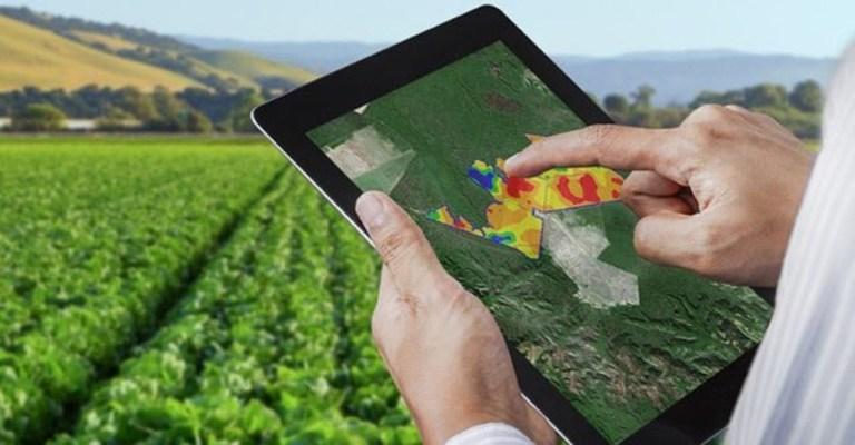 Aumento de startups no agronegócio refletem maturidade no campo