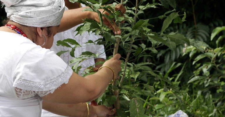 Belo Horizonte lança projeto de valorização das culturas tradicionais
