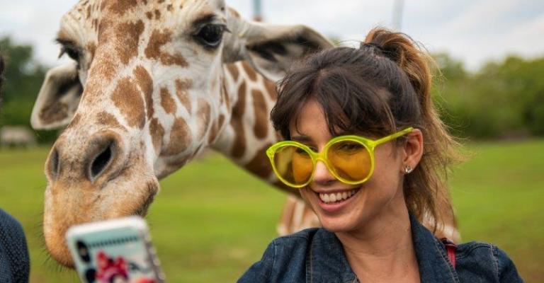 Celebridades brasileiras visitam o Busch Gardens