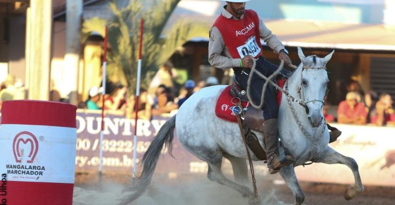 Mercado de equinos movimenta R$ 16,5 bi ao ano no Brasil