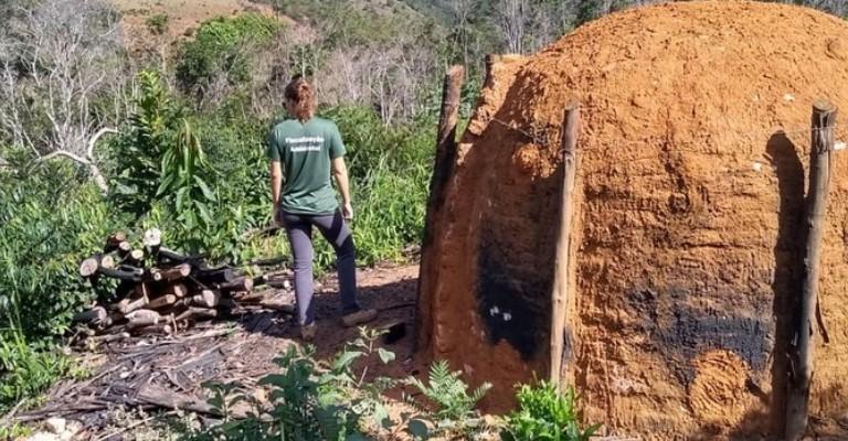 Operação reprime desmatamento ilegal no Leste de Minas