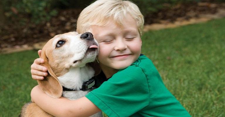 """""""Os cachorros realmente amam seus donos"""", diz especialista"""