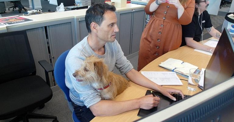 Pesquisa revela que permitir pets nos escritórios ajuda a reter e atrair talentos
