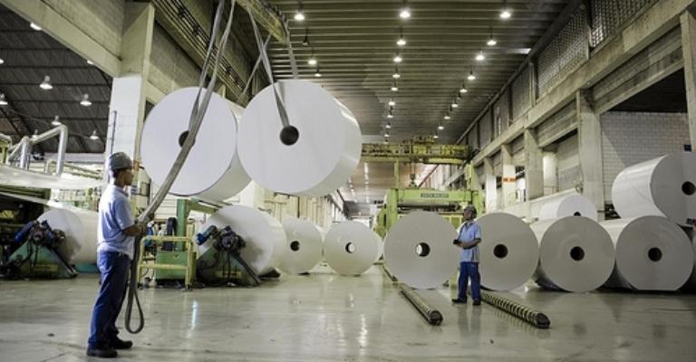 Triângulo Mineiro vai receber a maior empresa de celulose do mundo