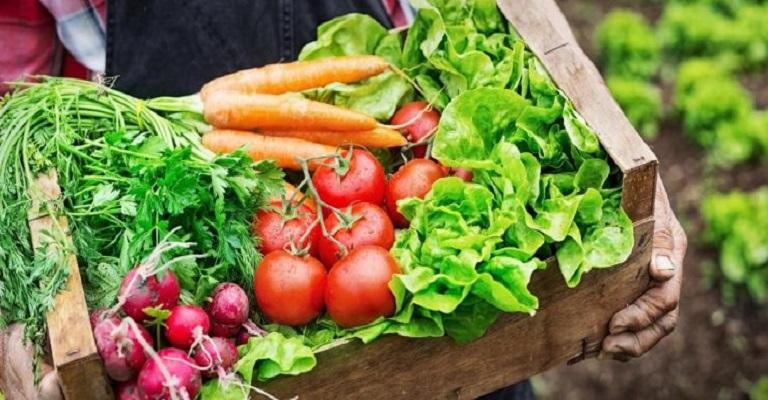 1 em cada 5 brasileiros é consumidor de produtos orgânicos
