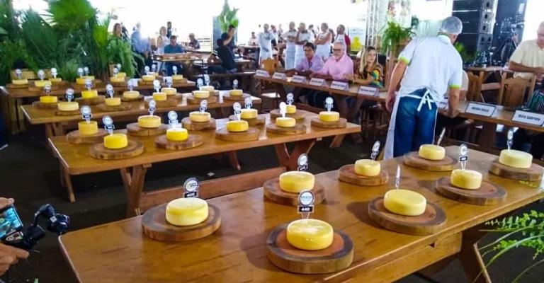 Concurso Queijo Minas Artesanal elege os 5 melhores do estado