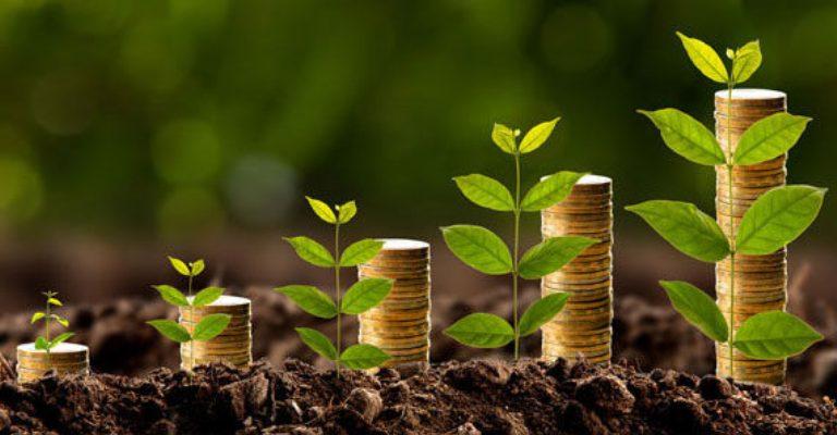 Bioeconomia é tema de nova página digital da Embrapa