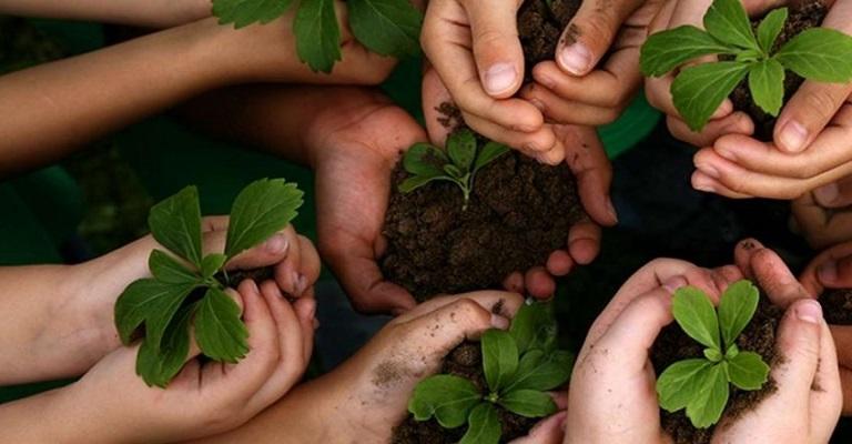 Educação ambiental deve estar atrelada à rotina escolar e familiar