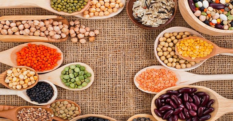 Proteínas vegetais são alternativas para uma nutrição saudável