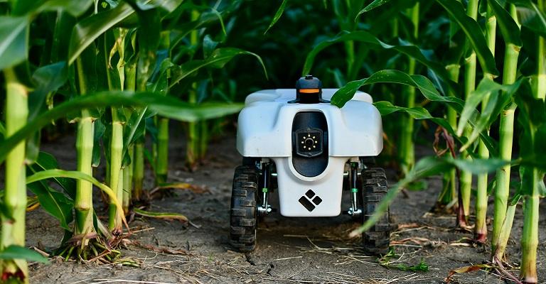 Estes robôs ajudam os agricultores a aumentar a produção agrícola