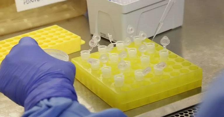 Vacina para a Covid-19, o que precisamos saber
