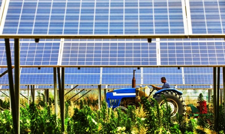Energia fotovoltaica no setor rural ultrapassa R$ 1,2 bilhão em investimentos