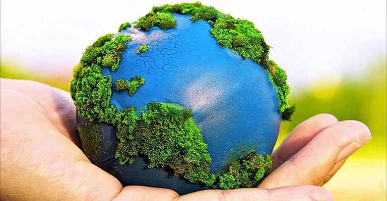 Dia Mundial do Meio Ambiente: o planeta em modo reset