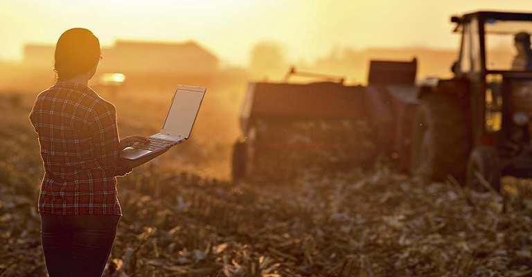 Sebrae abre inscrições para programa de pré-aceleração de startups para o Agro