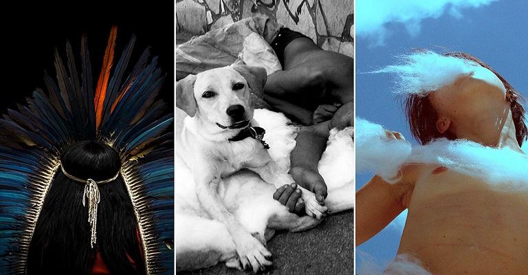 Confira a programação de lives da última semana do Projeto Fotografias por Minas