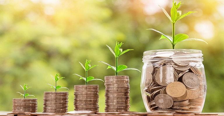 O compromisso com o futuro do planeta por meio dos investimentos verdes