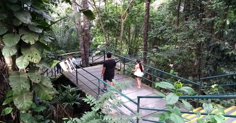 Realidade Aumentada e biodiversidade: uma nova experiência para o turismo