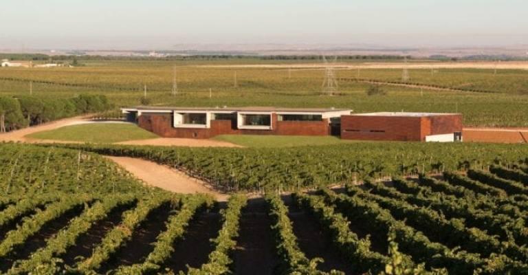 Vinícola da Espanha é eleita a mais ambientalmente eficiente na Europa